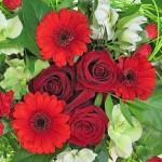 Upeat näyttävät kukat Nina Florasta!